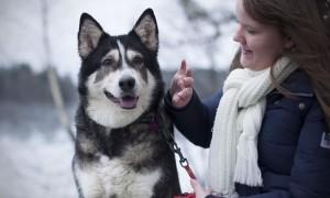En svartvit hund är ute i naturen och blir klappad av sin matte (Matilda).